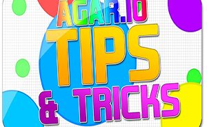 agar.io tips