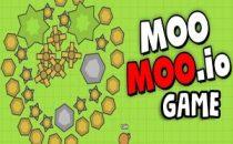 Essentials Of MooMoo.io Game