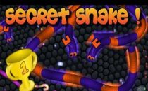 Slither.io Secret Snake Skin Hack Is Ready Now!
