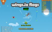 Start To Use Wings.io Flags