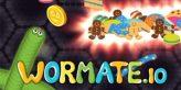 wormate.io guide